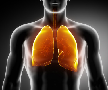 Mesothelioma Effects Lung Function